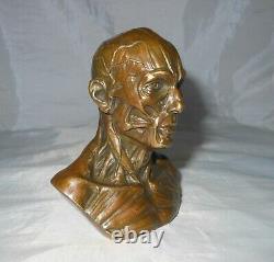 Cabinet De Curiosite/buste Bronze Ecorche/medecine/objet De Bureau
