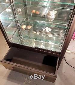 SUPERBE vitrine d'exposition en métal couleur bronze. RARE
